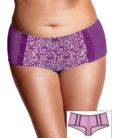 JMS Microfiber with Linear Lace/Mesh Insert Hipshorts 2 Pair